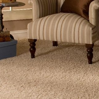 carpet cleaning dunwoody ga
